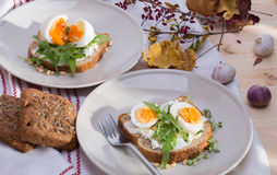 Sandwiches with eggs Royalty Free Stock Images