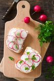 Sandwiches with feta, radish and parsley or dill. Rustic style. Sandwiches with feta, radish and parsley or dill. Rustic style, selective focus Royalty Free Stock Image