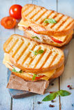 Sandwiches. Royalty Free Stock Image