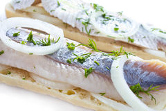 Sandwiches with herring closeup Royalty Free Stock Photo