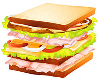 Sandwiches. Illustration of a healthy sandwiches Stock Photography