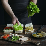 Sandwiches ingredients Stock Photography