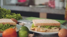 Sandwiches just prepared on kitchen, between ingredients. Two plates with square sandwiches just prepared on kitchen, between ingredients - eggs, lettuce stock footage