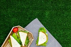 Sandwiches with lettuce for picnic on tablecloth on green grass background top view copyspace Stock Photo