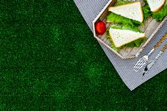 Sandwiches with lettuce for picnic on tablecloth on green grass background top view copyspace Stock Image