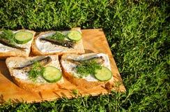 Sandwiches met sprotten op tarelke Stock Foto