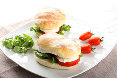 Sandwiches with mozzarella, tomato and lettuce. On complex background Royalty Free Stock Image