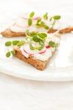 Sandwiches with radish Stock Image