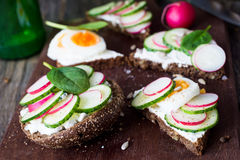Sandwiches with radish, cucumber and spinach. Tasty sandwiches with cucumber, radish, spinach, egg and goat cheese spread. Closeup view Royalty Free Stock Photo