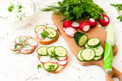 Sandwiches with radish and sour cream sauce. Spring snacks sandwiches with radish, cucumber and cream sauce. cream cheese with a plate and parsley Stock Photos
