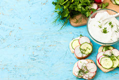Sandwiches with radish and sour cream sauce. Spring snacks sandwiches with radish, cucumber and cream sauce. cream cheese with a plate and parsley Royalty Free Stock Image