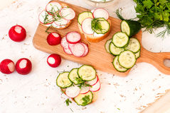 Sandwiches with radish and sour cream sauce and vegetables. Spring snacks sandwiches with radish, cucumber and cream sauce. radish, dill and parsley Royalty Free Stock Images