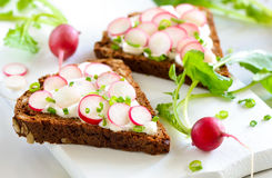 Sandwiches with radishes Royalty Free Stock Photos