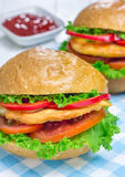 Sandwiches with roast chicken fillet, tomato and paprika. Closeup Stock Photo