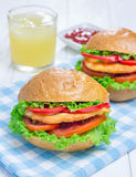 Sandwiches with roast chicken fillet, tomato and paprika. Closeup Royalty Free Stock Photography
