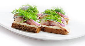 Sandwiches of rye bread with herring, Stock Photography