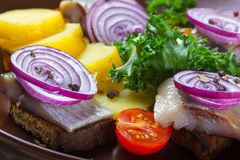 Sandwiches of rye bread with herring Royalty Free Stock Image