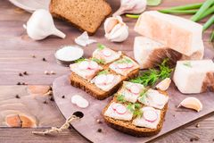 Sandwiches from rye bread, salted bacon, radish and dill. On a cutting board on a wooden table Royalty Free Stock Photos