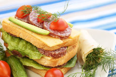 Sandwiches Stock Image