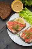Sandwiches with salmon Royalty Free Stock Photo