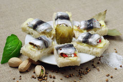 Sandwiches with salted fish Royalty Free Stock Images