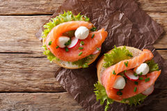 Sandwiches with salted salmon, mozzarella, frisee, onion and rad Royalty Free Stock Images