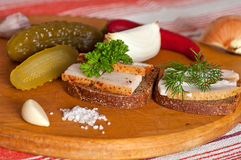 Sandwiches with salted and spiced lard Royalty Free Stock Image