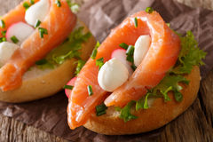 Sandwiches with smoked salmon, mozzarella, lettuce and radish cl Royalty Free Stock Photos