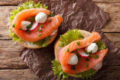 Sandwiches with smoked salmon, mozzarella, lettuce and radish cl Stock Photo