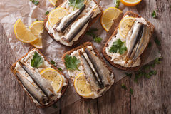 Sandwiches with sprats, cream cheese close-up. Horizontal top vi Royalty Free Stock Photography