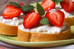 Sandwiches with strawberries,  mint and cream cheese  macro Stock Images