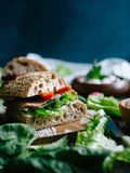 Sandwiches with vegetables and bacon Royalty Free Stock Photography