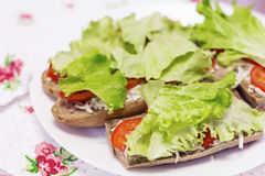 Sandwiches in a white plate with mozzarella, tomato and lettuce Royalty Free Stock Image