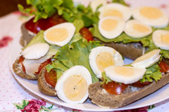Sandwiches in a white plate with mozzarella, tomato and lettuce Royalty Free Stock Photos