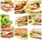 Sandwichescollage Royalty-vrije Stock Fotografie