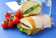 Sandwichs à casse-croûte (panini) avec des légumes Image libre de droits
