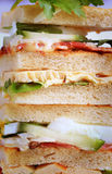 Sandwichs à club Photos stock