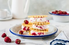 Sandwichs à crème glacée de framboise Photos stock