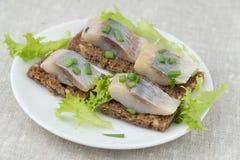 Sandwichs à harengs Photos stock