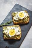 Sandwichs à oeufs et à avocat avec le fromage fondu pour le petit déjeuner sain images libres de droits