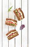 Sandwichs à perle de seigle de salami image libre de droits