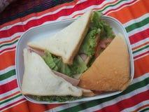 Sandwichs1 Immagini Stock