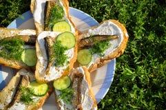Sandwichs avec des esprots sur le tarelke Images libres de droits