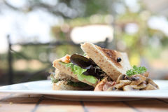 Sandwichs avec des saumons Image libre de droits