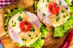 Sandwichs avec du fromage, la dinde, la laitue et la tomate Photos libres de droits