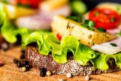 Sandwichs avec du fromage, la dinde, la laitue et la tomate Photos stock