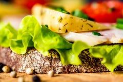 Sandwichs avec du fromage, la dinde, la laitue et la tomate Photo stock