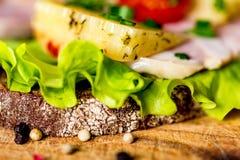 Sandwichs avec du fromage, la dinde, la laitue et la tomate Photographie stock