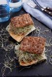 Sandwichs avec la dinde, le fromage, et les pousses grillés de poireau Photos libres de droits