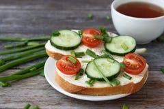 Sandwichs avec le fromage fondu, les tomates-cerises, les concombres et les oignons verts images stock